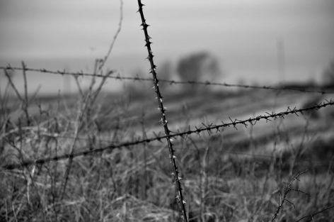Naturligt & mänskligt gjord taggtråd...