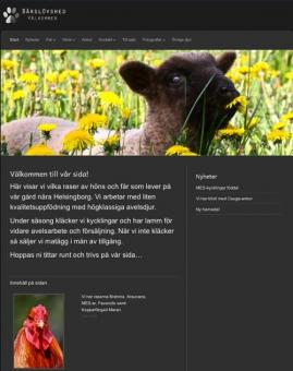 www.barslovshed.se