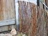 Fiffigt staket av kompostnät och pil!